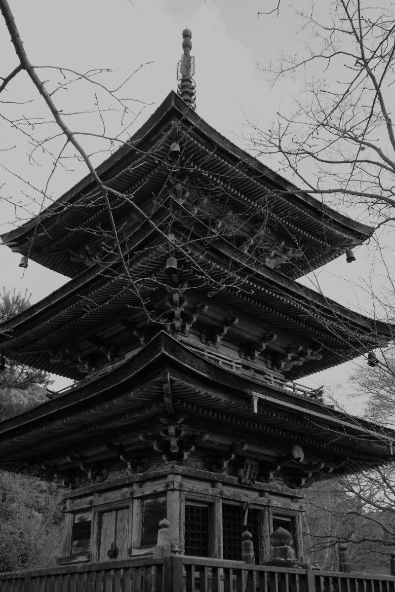 architect_013